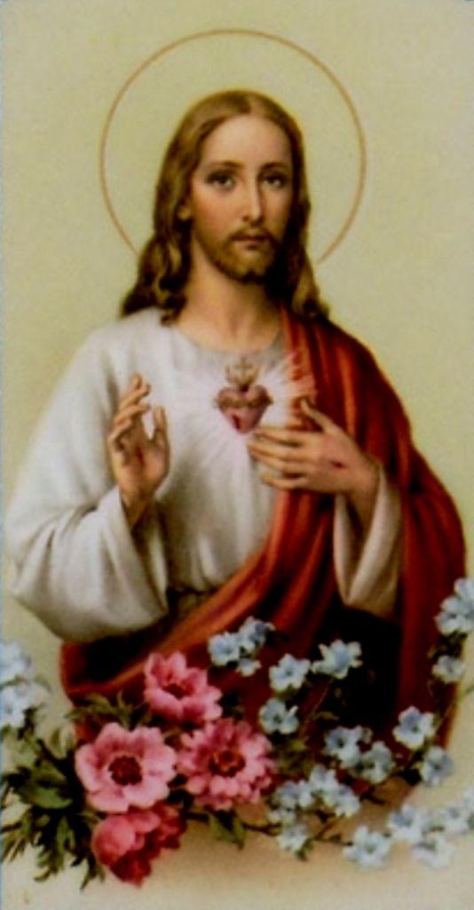 A GRANDE REVELAÇÃO DO SAGRADO CORAÇÃO DEJESUS